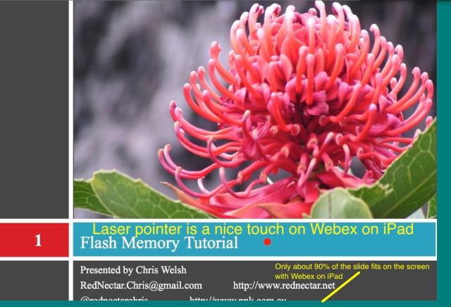 Webex On iPad