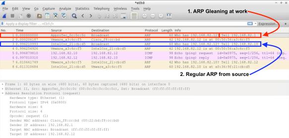 ARP Gleaning – ACI Master Class | RedNectar's Blog