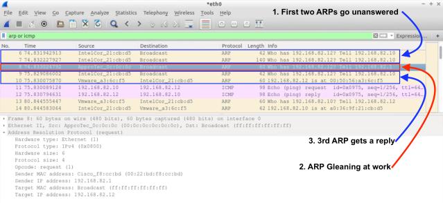 ARP Gleaning – ACI Master Class | RedNectar\'s Blog